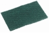 Small_Green_Scourer_Pad