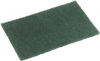 Large_Green_Scourer_Pad